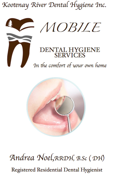 mobile dental care services